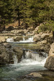 Mountain stream near Albertacce in Corsica Stock Image