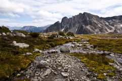 Mountain Stream, near Downton Creek, Pemberton, British Columbia Stock Image