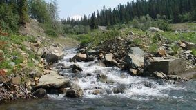 A mountain stream in northern canada in the springtime stock video footage