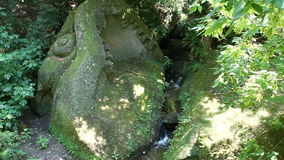 Mountain stream among old stones and greenery stock video footage
