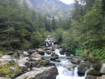 Mountain stream. An outdoor landscape with a mountain stream flowing through rocks Royalty Free Stock Photography
