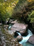 Mountain stream. Photos from the series: The world through a lens. The photo was taken at Lake Ritsa, Abkhazia royalty free stock images