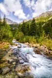 Mountain stream in the Polish mountains Royalty Free Stock Images