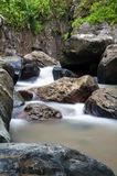 Mountain stream in Puerto Rico Royalty Free Stock Photography