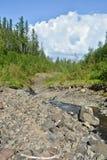 Mountain stream on the Putorana plateau. Stock Images