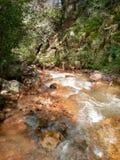 Mountain stream. Red rock mountain stream & verdant cliffs Stock Photography