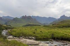 Mountain stream and Rhino Peak. Drakensberg South Africa Royalty Free Stock Image