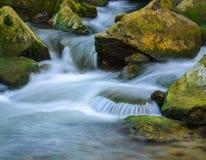 Mountain stream river Royalty Free Stock Photo