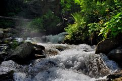 Cascading mountain stream - whirlin waters Stock Photos