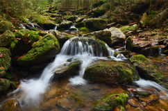 Mountain stream. Mountain river with clear water in the forests of the National Park Stock Photos