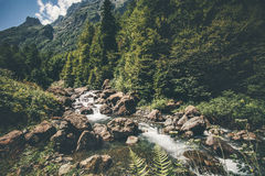 Mountain stream river and deep forest Landscape Stock Image