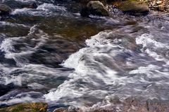 Mountain stream river with rapids Royalty Free Stock Photos
