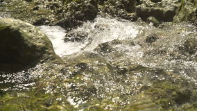 Mountain stream river. Mountain river. Stones and mountain river with small waterfall. Flowing mountain stream with transparent water and stones. Rocky Stream stock video