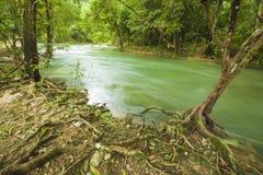Mountain stream. Mountain river in thailand Stock Photography