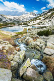 Mountain Stream in Rocks by a Mountain Lake Stock Image
