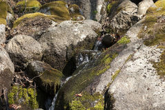Mountain stream between rocks Stock Image