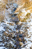 Mountain stream. Running on a cold sunny winter day with snow and ice all over Royalty Free Stock Photo