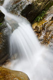 Mountain stream running over rocks Stock Photos