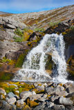 Mountain stream rushes down in the valley Royalty Free Stock Images