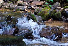 Mountain stream rushing water Royalty Free Stock Images