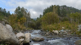 Mountain stream in Sayan Royalty Free Stock Photography