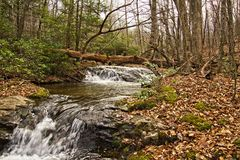 Mountain Stream. A scene of a stream in the Blue Ridge Mountains during winter months. The area is near Crabtree Falls Virginia Royalty Free Stock Photo