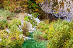 Mountain Stream Scenery Stock Images