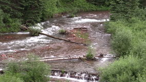 Mountain Stream. A scenic mountain stream near aspen colorado stock footage