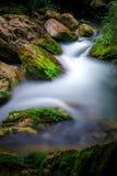 Ravine stream stock photography