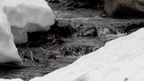 Mountain stream in slow motion. stock video
