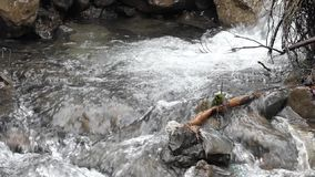 Mountain stream in slow motion. stock video footage