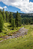 Mountain stream. A small stream flowing from the mountains Stock Photos