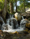 Mountain stream, a small waterfall, water flowing among large stones Stock Photo