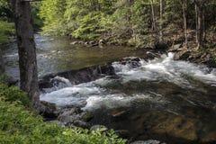 A Mountain Stream In Smoky Mountain National Park Stock Photography