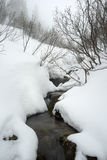 Mountain stream in snow Stock Photography