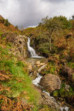 Mountain Stream Snowdonia National Park. A small mountain stream and waterfall in Cwm Bychan near Beddgelert in the Snowdonia National Park in North Wales Stock Image