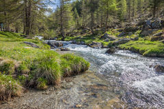 Mountain stream in South Tyrol Stock Images