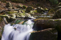 Mountain stream in the spring Royalty Free Stock Photography