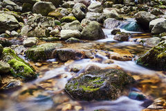 Mountain stream in the spring Stock Photography