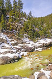 Mountain Stream in Spring Snow Stock Images