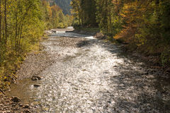 Mountain stream Stillach in the alps Stock Image