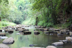 Mountain stream. Stone and clear water from mountain stream Stock Photography