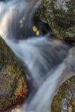 Mountain stream between stones. Stock Images