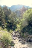 Mountain stream on the stones in nature.  royalty free stock photography