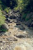 Mountain stream on the stones in nature.  stock photos