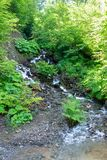 Mountain stream with stones, surrounded by greenery stock image