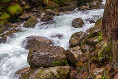Mountain stream stones. Mountain stream surrounded by stones, trees and rocks Stock Images