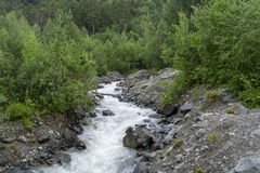 Mountain stream with stony shore between green trees in the foothills of Elbrus, North Caucasus, Russia.  Stock Images