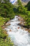 Mountain stream on summer Royalty Free Stock Photography