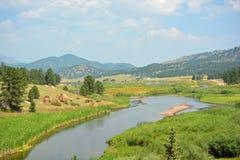 Sunny Winding Mountain Stream Stock Photo